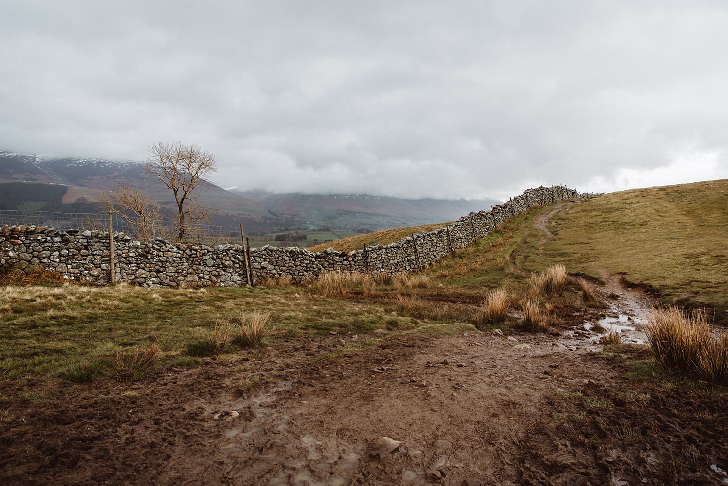 lake district travel photography fell and stone wall