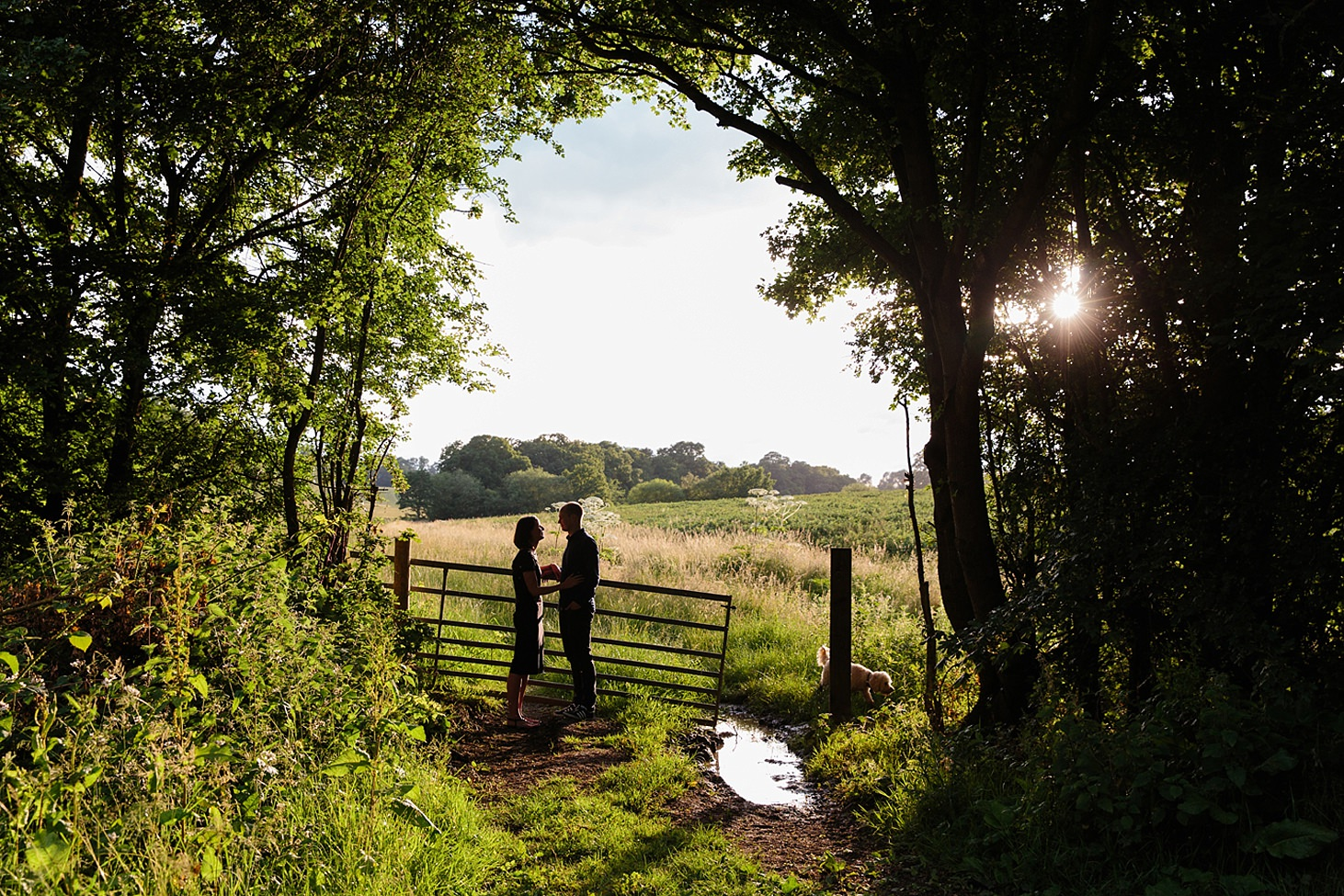 trent park engagement shoot couple in field