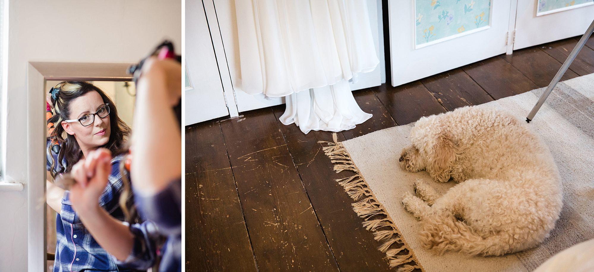 Outdoor humanist wedding photography bride's dog