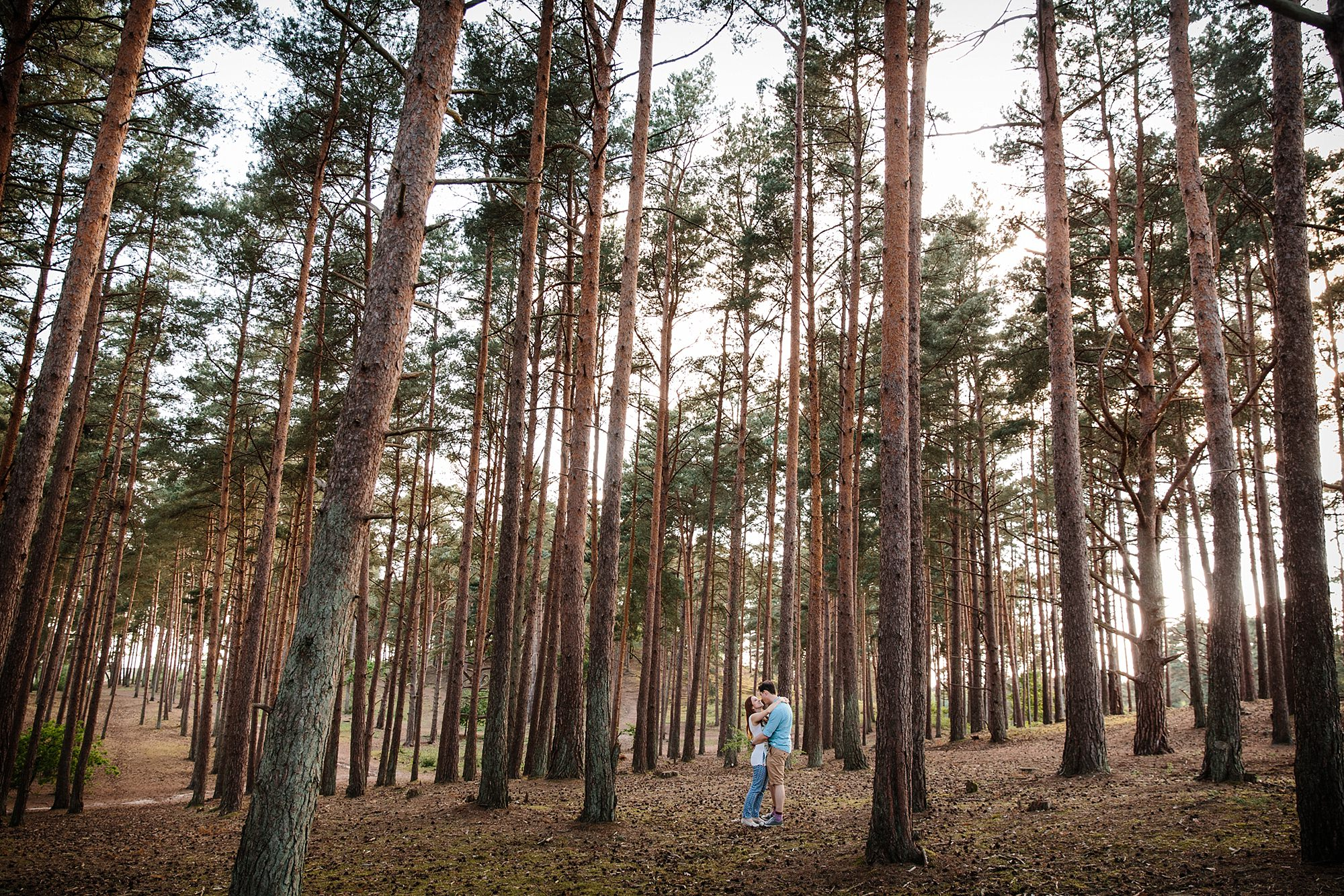 Farnham engagement photography in the forest at frensham
