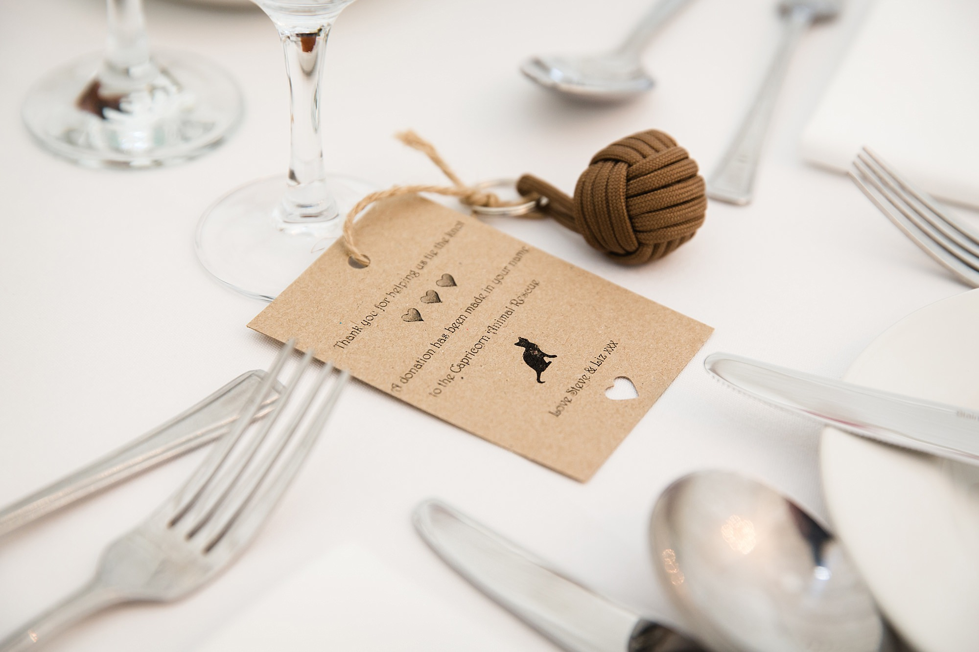 A fun wedding at Plas Isaf cat shelter donation favours