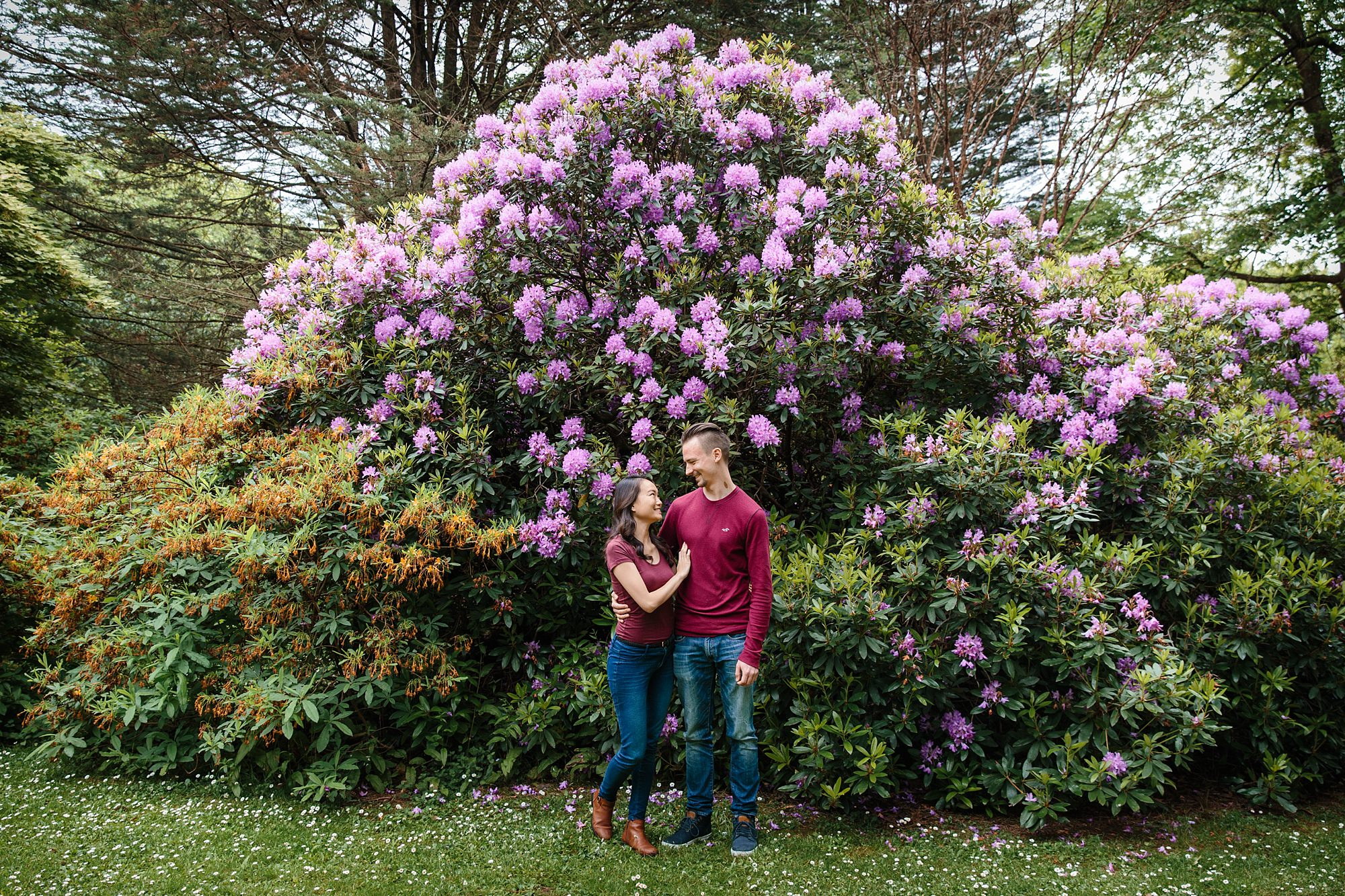 Cardiff couples shoot with rhododendron