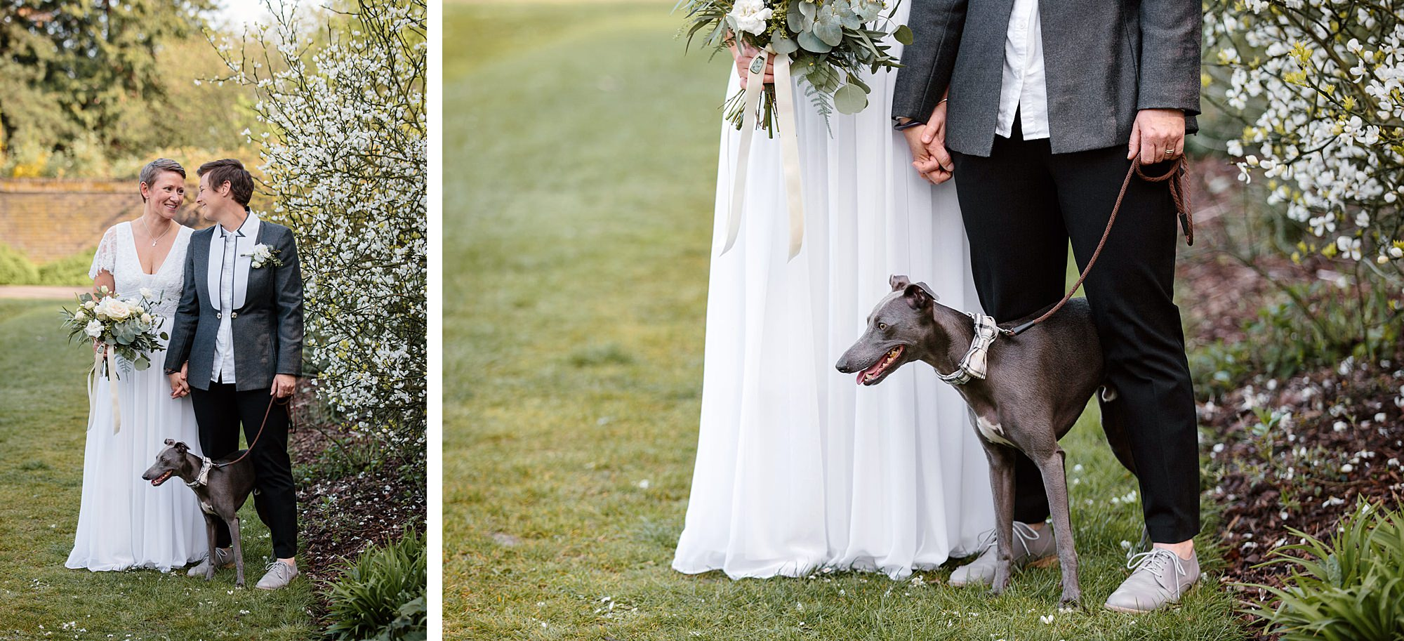Twickenham wedding photography brides stand with their whippet dog