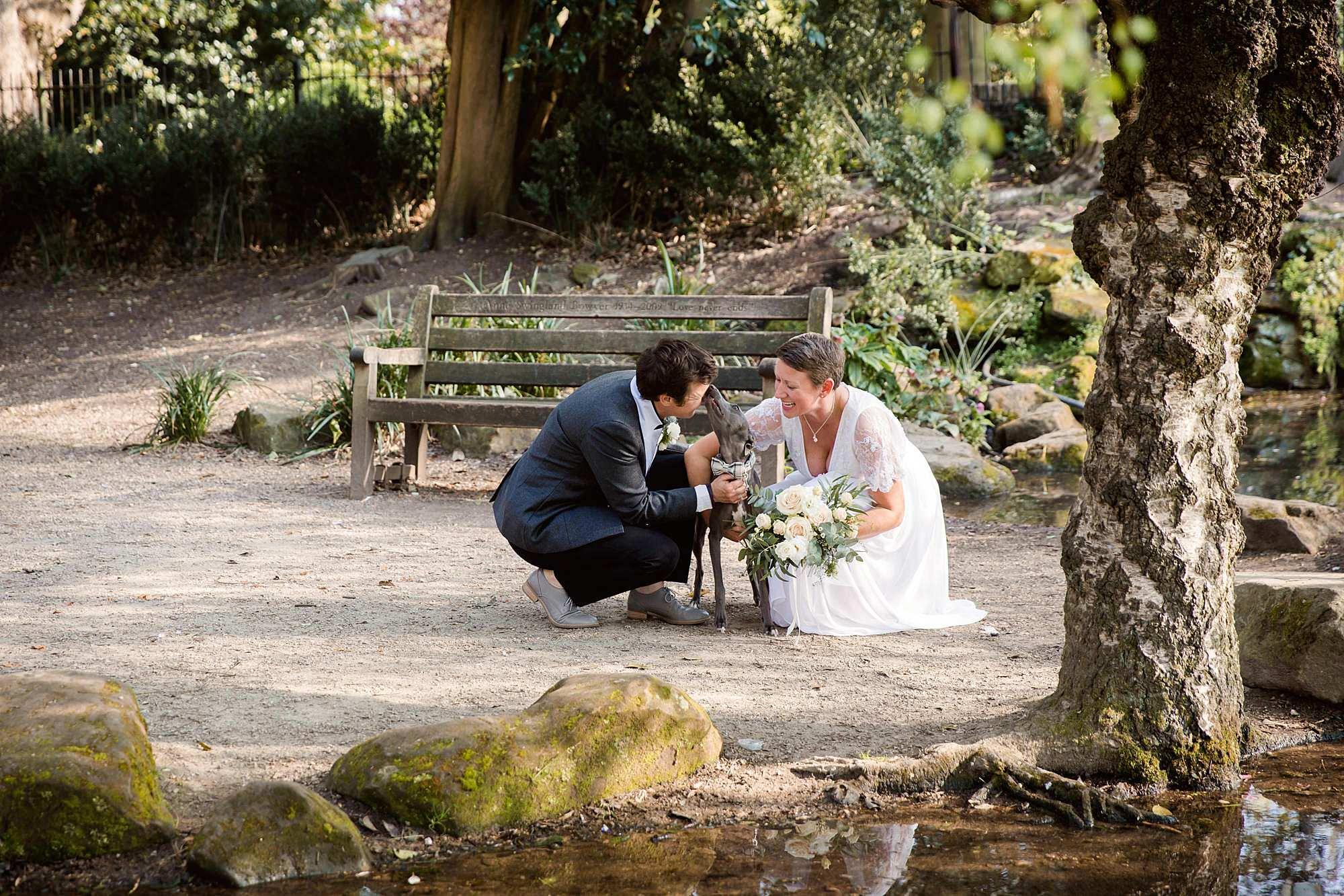 Twickenham wedding photography bride's fits over their whippet dog