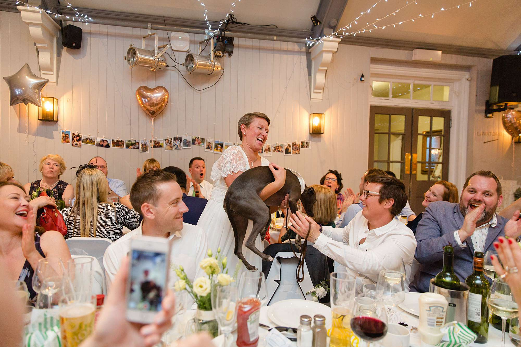 bride laughs and picks up her dog at turks head pub wedding